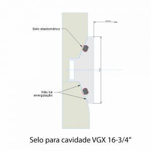 "Selo para cavidade VGX 16-3/4"""