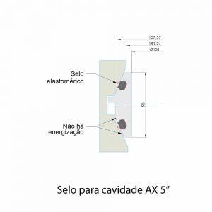 """Selo para cavidade AX 5"""""""
