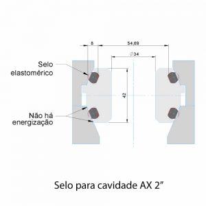 """Selo para cavidade AX 2"""""""